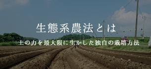 生態系農法とは 土の力を最大限に生かした独自の栽培方法