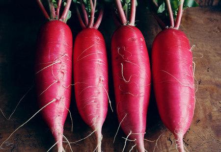 紅ミニ大根のサムネイル