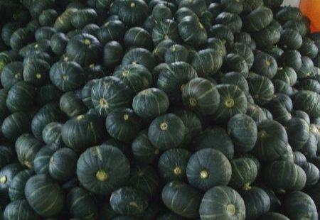 小玉南瓜のサムネイル