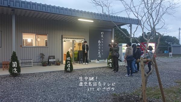 鹿児島読売テレビ『 KYT かごピタ 』